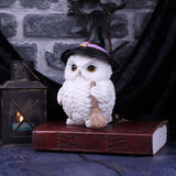 Snowy Magic White Owl in a Witch's Hat and Broomstick