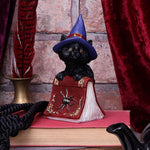 display Hocus Small Witches Familiar Black Cat and Spellbook Figurine