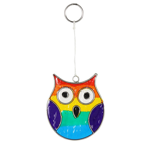Small Cute Rainbow Owl Resin Suncatcher with complimentary window sucker from Mystical and Magical Halifax