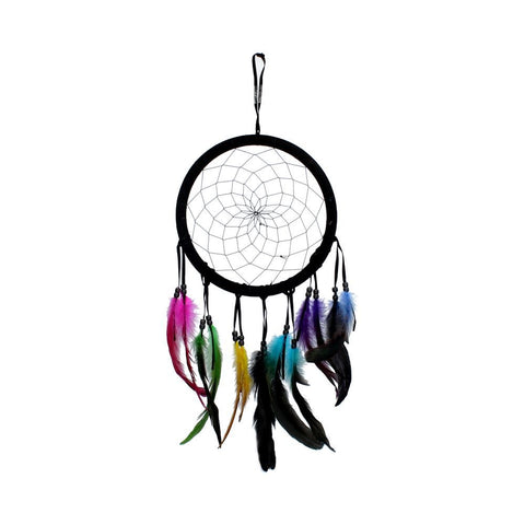 Vivid Dreams Dreamcatcher with Multi Coloured Feathers