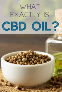 WHAT IS CBD OIL?