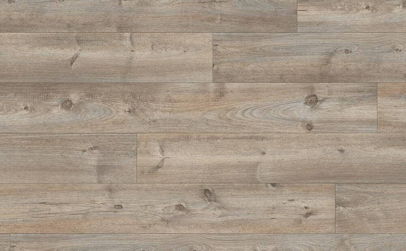 Egger Grey Grandola Pine 10mm Extra Long Mammut Plus Laminate Flooring 2050mm x 245mm (EHL113)