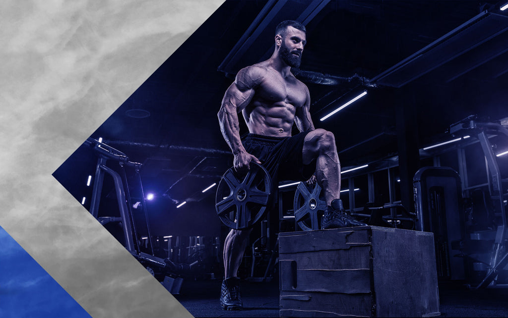Rad140 Sarms Overview