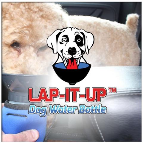 Lap-It-Up Dog Water Bottle