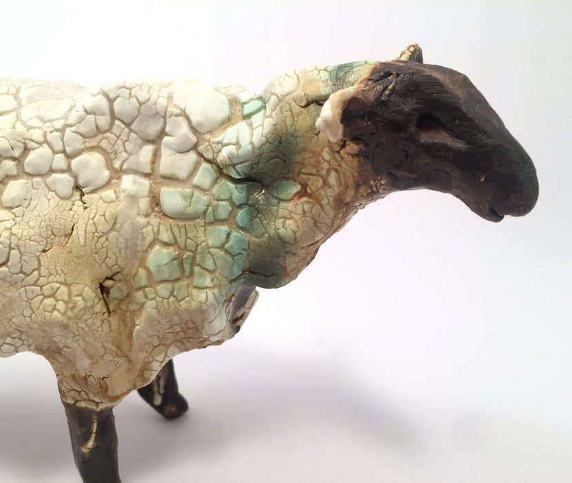 Sheep by Erin Robertson