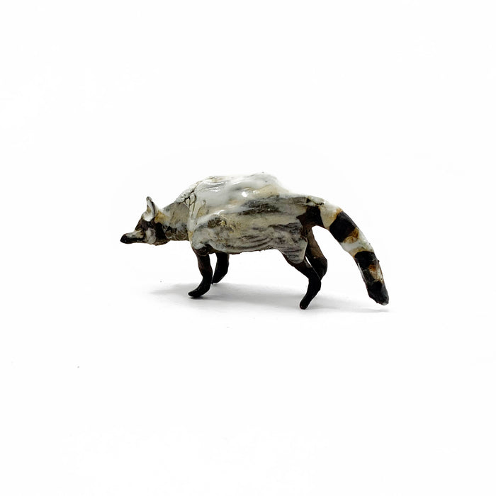 Small White Raccoon