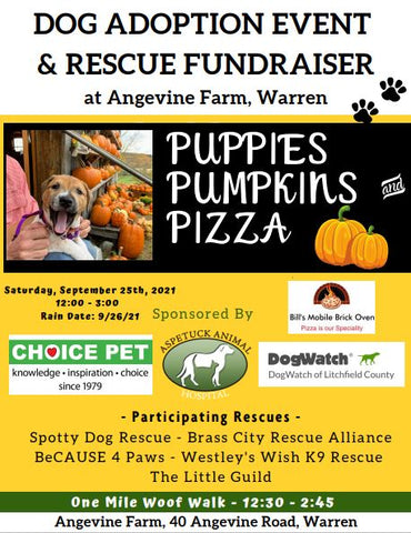 Dog Adoption Event and Rescue Fundraiser at Angevine Farm, Warren, CT
