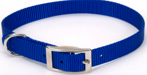 Coastal Pet Products Standard Nylon Small Dog Collar