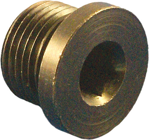DAYTONA HEX PLUG FOR O2 WELD NUT REPLACEMENT PART 115002