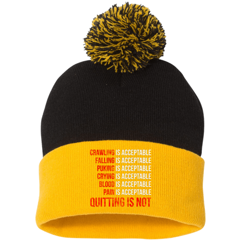 Custom Designed Pom Pom Knit Cap