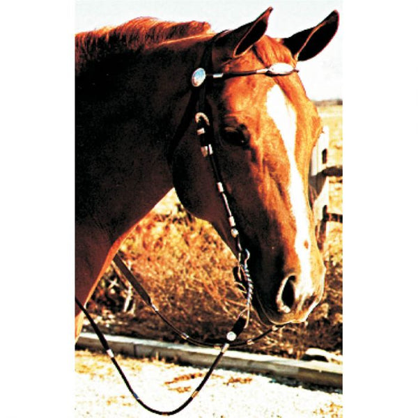 West Poco Headstall - Pony