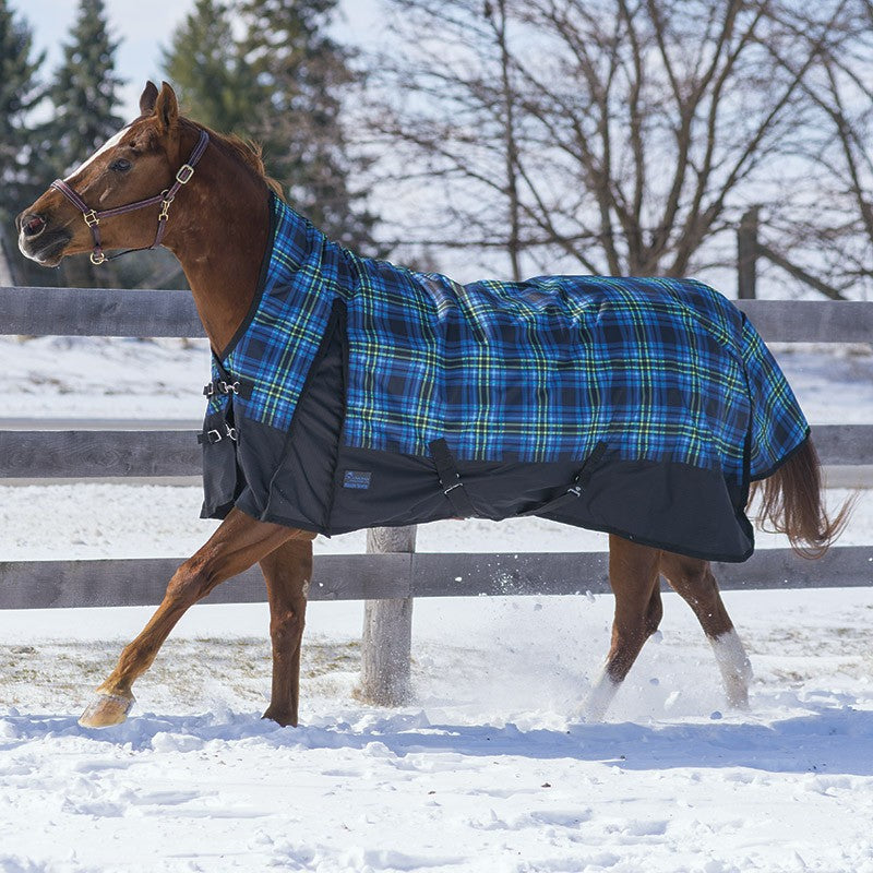2019 Acadia Turnout by Canadian Horsewear