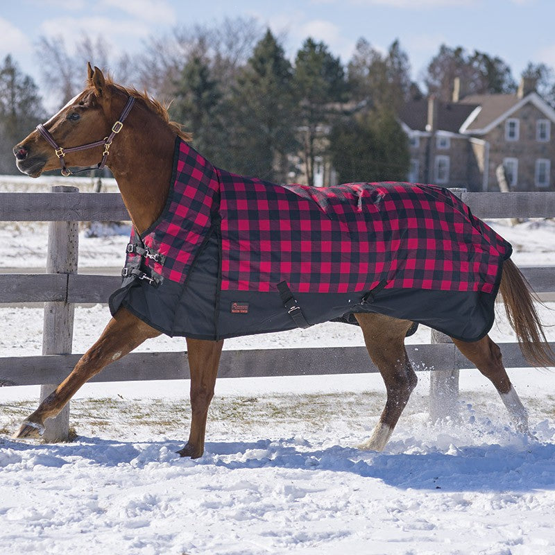 Canadian Horsewear winter blanket Buffalo Plaid