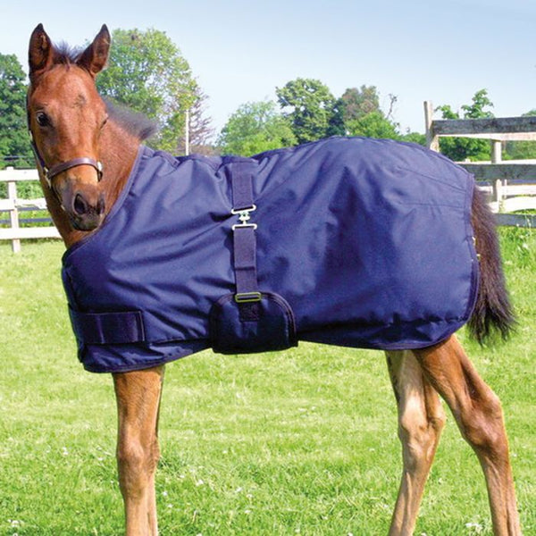 Mini and Foal Winter Blanket by Canadian Horsewear
