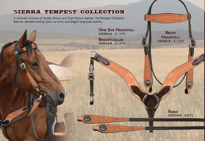 Sierra Tempest Collection One Ear Headstall & Rein Set