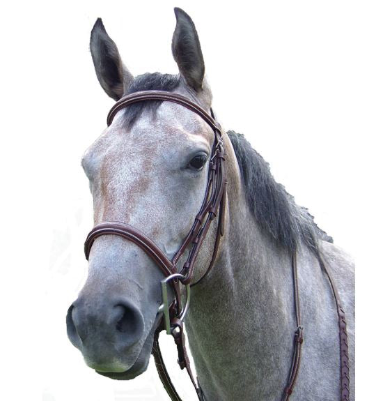 PT Fancy Stitched Padded Hunter Bridle