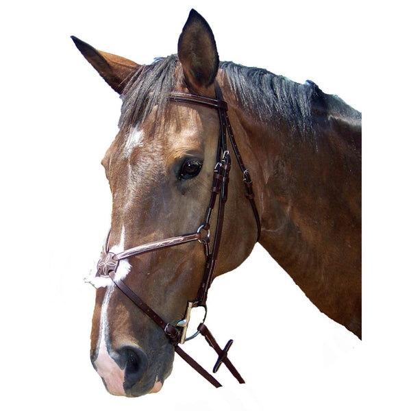 PT Raised Figure-8 Bridle