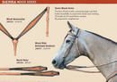 Sierra Mixed Series - Headstall, Reins & Breastcollar Set - Discontinued