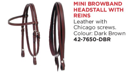 Mini Browband Headstall with Reins