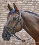 Waldhausen Star Basic Hunter Bridle