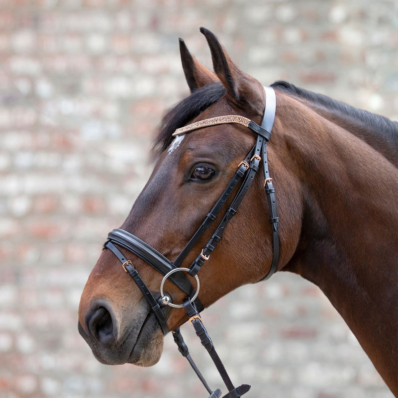 Waldhausen Star Rose Gold Metallic Bridle