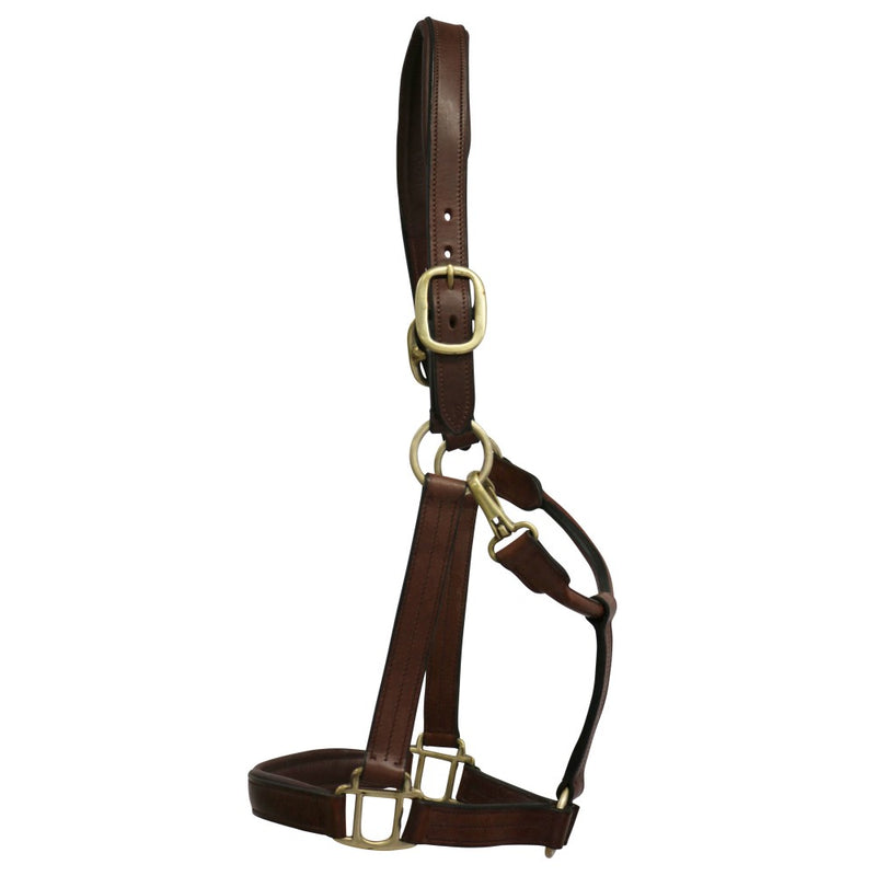 Plain Brown Leather Halter - Warmblood