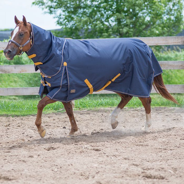 2020 Canadian Horsewear Diablo Oxford 1200D Turnout 300gm