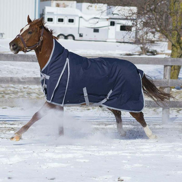 Hudson Canadian Horsewear 160gm Insulated Rainsheet