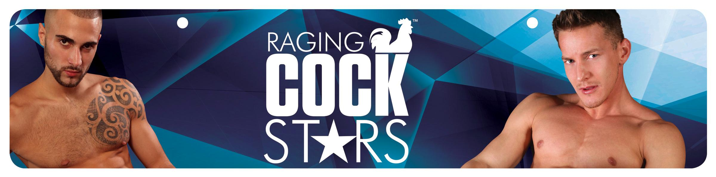 Raging Cockstars Display Sign