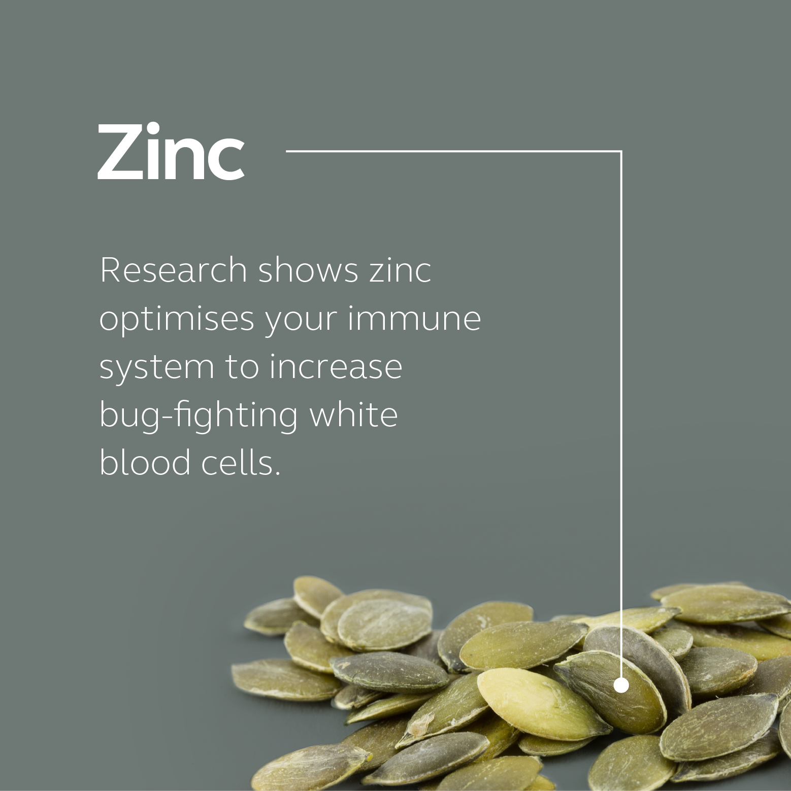 Food-Grown Immune Support - Zinc