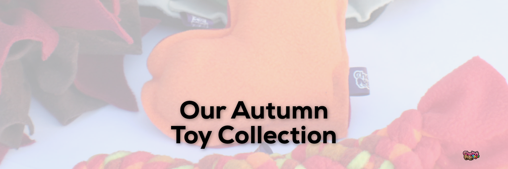 Our Autumn Toy Collection