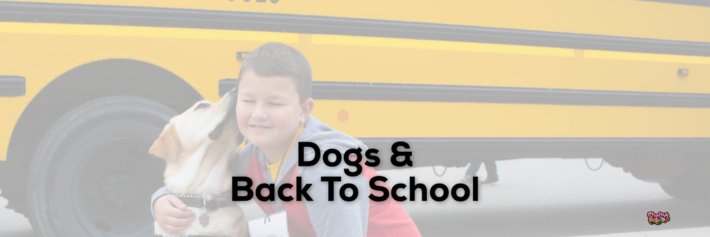 Dogs & Back To School