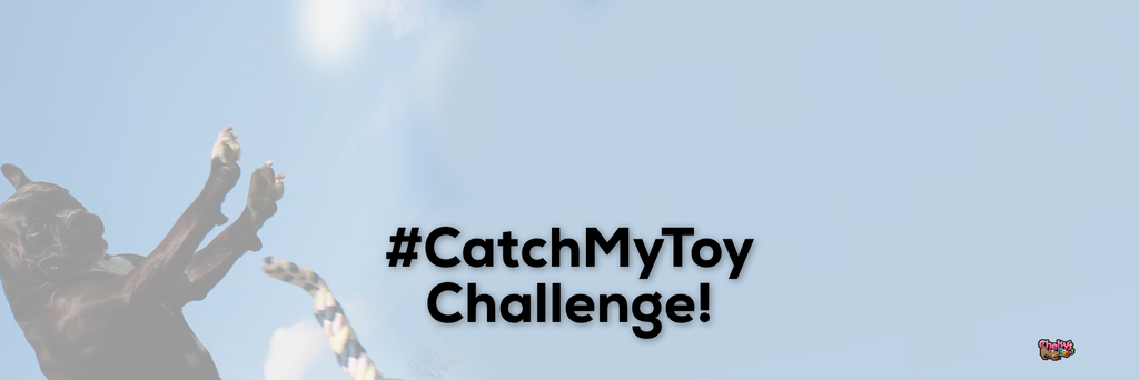 #CatchMyToy Challenge!