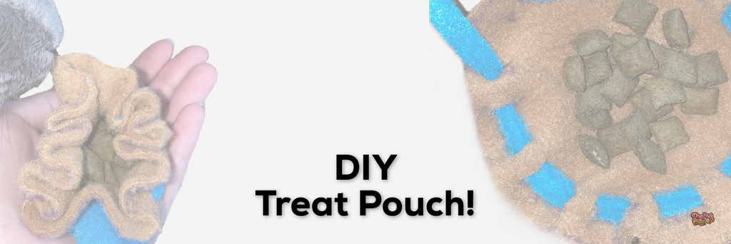 DIY Treat Pouch!