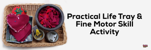 Practical Life & Fine Motor Skill Tray Activity