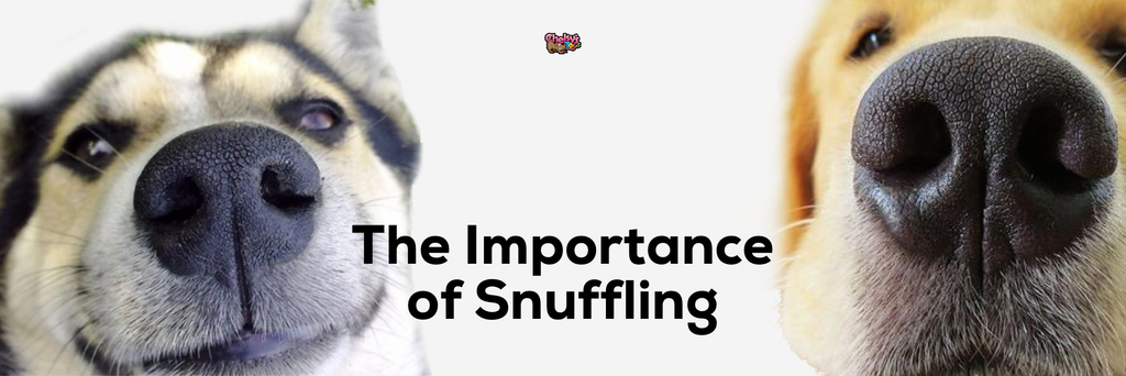 The Importance of Snuffling