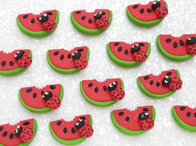 Clay Charm Embellishment - NEW Watermelon Ladybug