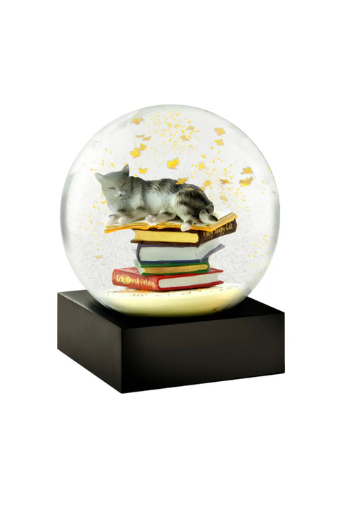 Cat on Books Snow Globe - from CoolSnowglobes - Pure Placid
