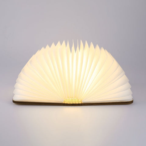 The LED Book Lamp