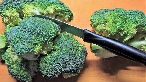 Vitamin rich broccoli
