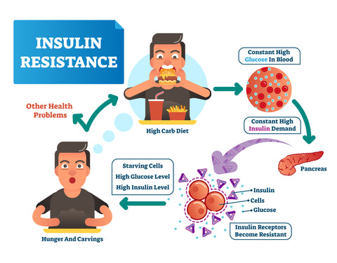 Illustration of insulin resistance