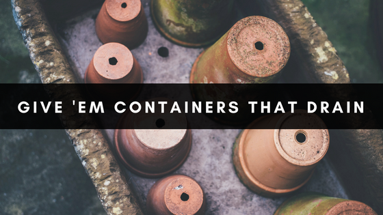 Give 'Em Containers That Drain