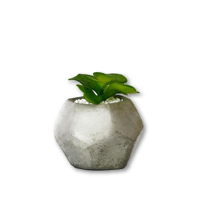 GEO Dode Planter-Concrete Unicorn