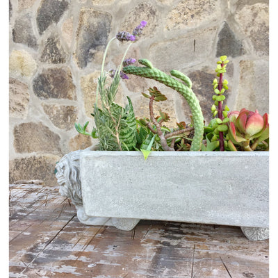 Concrete Lion Pot Feet (Set of 3)-Concrete Unicorn
