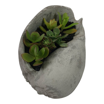 Succulent Seashell Planter-Concrete Unicorn