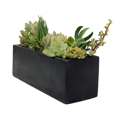 Small Rectangular Planter