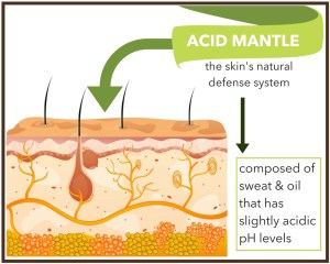 what is the acid mantle?