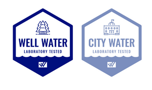 City and Water Icon