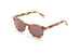 Ross And Brown Harvard Sunglasses