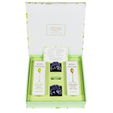 Taste of Bona Furtuna - Organic Olive Oil Tasting Gift Set with Tasting and Watch Glasses